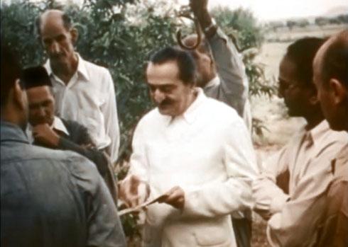 1954 , Meherabad, India