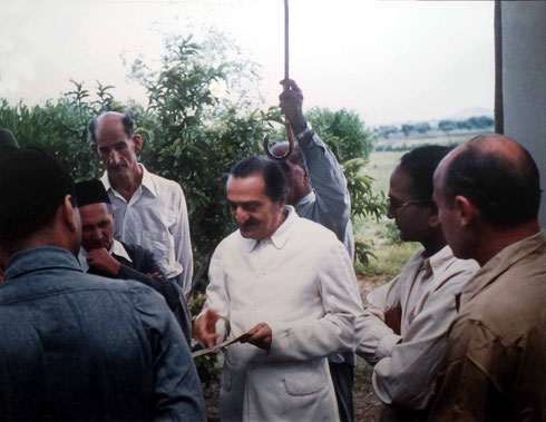1954 : Meherabad - ( L-R ) Eruch, Gustadji, Fred Marks, Meher Baba, Kaka with umbrella, Kumar and Francis far right