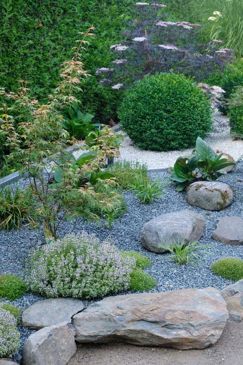 dieartigeGARTEN //  Japanischer Bauerngarten - der Beginn mit Jap. Ahorn, Japangras + Bergenie, Natursteinkante