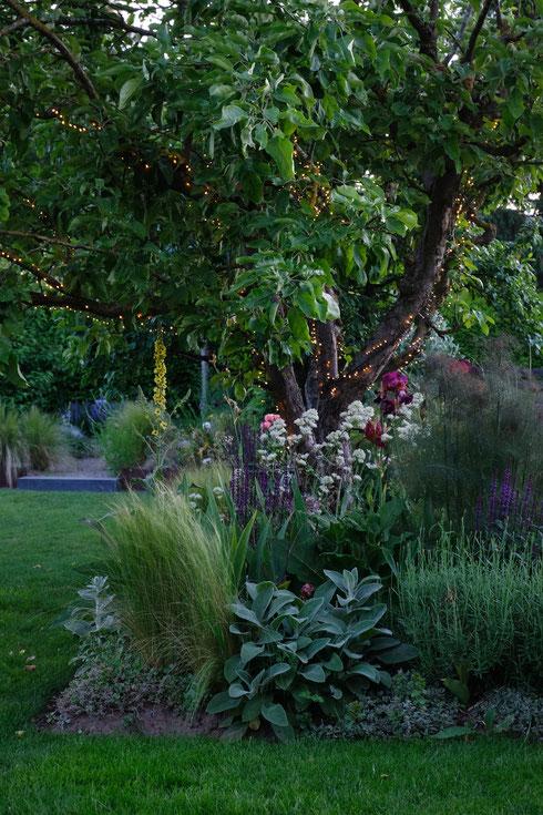 dieartigeGARTEN // June Garden - Mystic Beet with lights in the evening, Iris, Wollziest, Spornblume