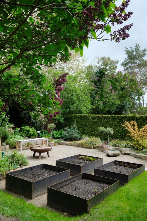 dieartigeGARTEN // (early) May Garden - high beds / Knieehochbeete mit Salat, ausgesamten Zinnien+Dahlienknollen