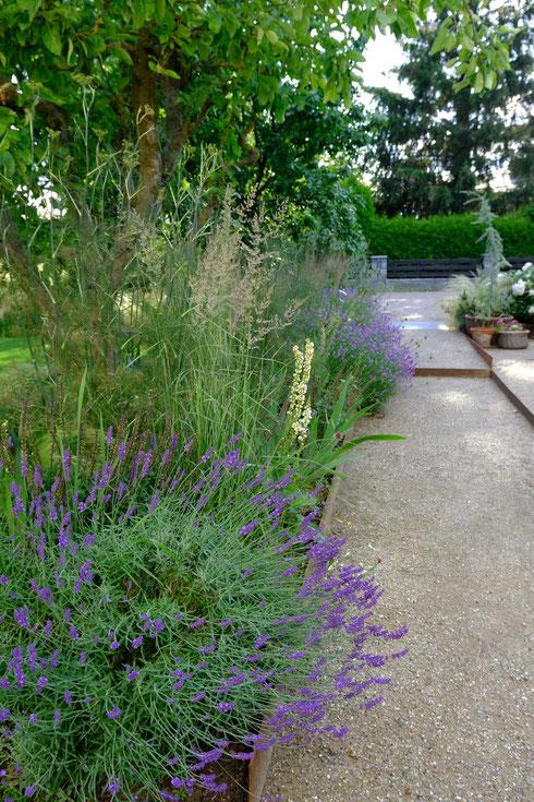 dieartigeGARTEN // July Garden - Lavender way