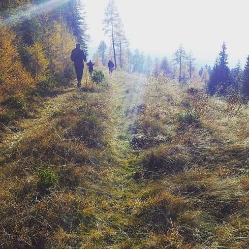 Hunter's Meditation: Finding what you need to thrive.   Susanna Kubarth, Graz / Vienna / Austria