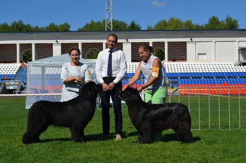 Voodoo & Tosha, International dog show Smolensk Russia August 2015
