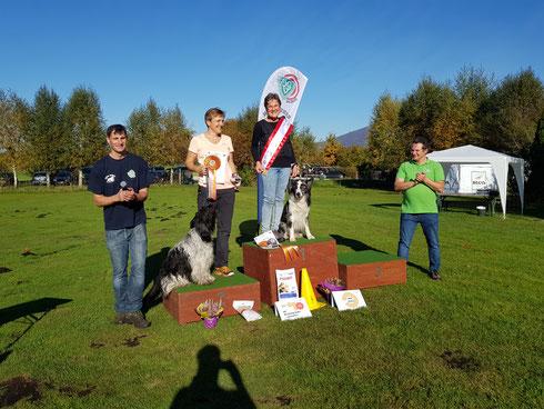 Siegerpodest ÖGV Sieger 2017 Rally Obedience
