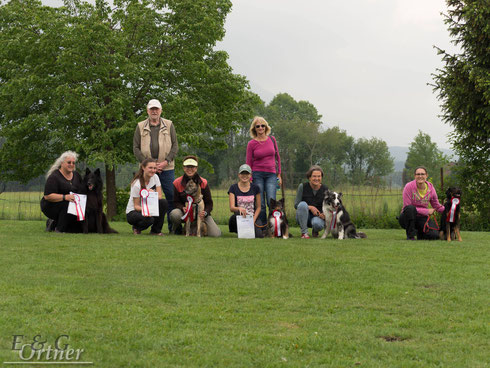 Unsere Obedience & Rally Obedience Starter/innen