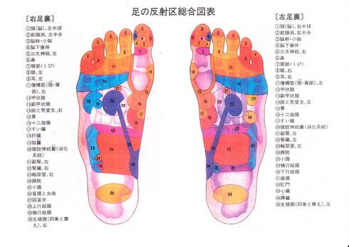 足裏で見える健康状態1