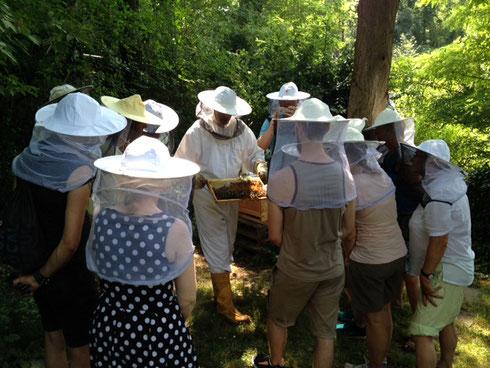 Erwachsenengruppe im Bienenretter Garten