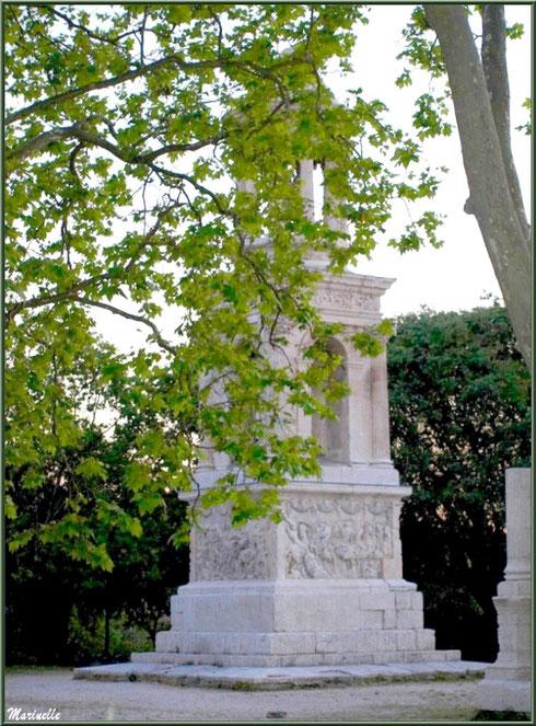 Le Mausolée des Jules aux Antiques, en fin d'après-midi, derrière la verdure, à Saint Rémy de Provence, Alpilles (13)