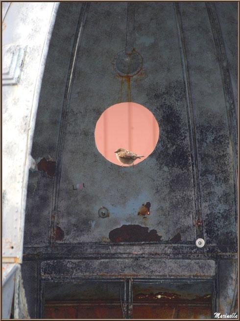 Moineau de l'espace sur un hublot de la soucoupe volante à l'OVNIport à Arès (Bassin d'Arcachon)