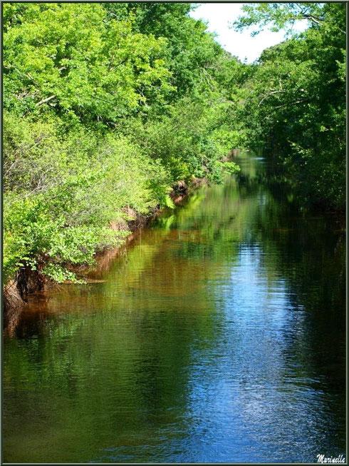 Le Canal des Landes au Parc de la Chêneraie à Gujan-Mestras (Bassin d'Arcachon)