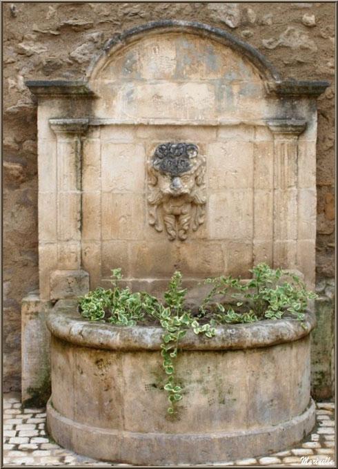 Fontaine au coeur du centre ville à Saint Rémy de Provence, Alpilles (13)