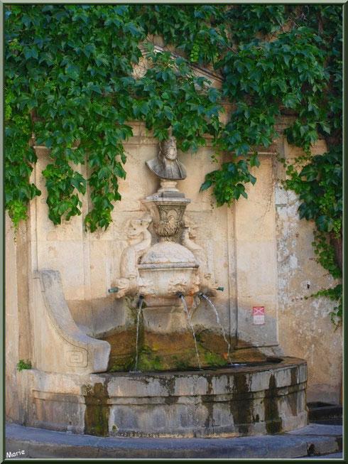 Fontaine Nostradamus au coeur du centre ville à Saint Rémy de Provence, Alpilles (13)