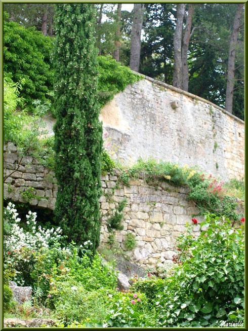 Muraille verdoyante au détour d'une ruelle dans le village d'Oppède-le-Vieux, Lubéron (84)
