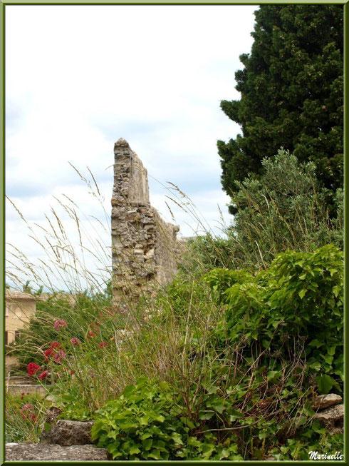 Muraille et verdure au détour d'une ruelle dans le village d'Oppède-le-Vieux, Lubéron (84)