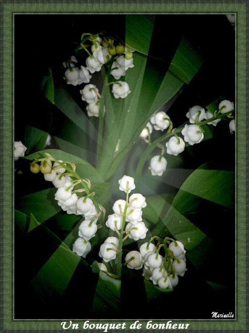 Muguet 1er mai, un bouquet de bonheur