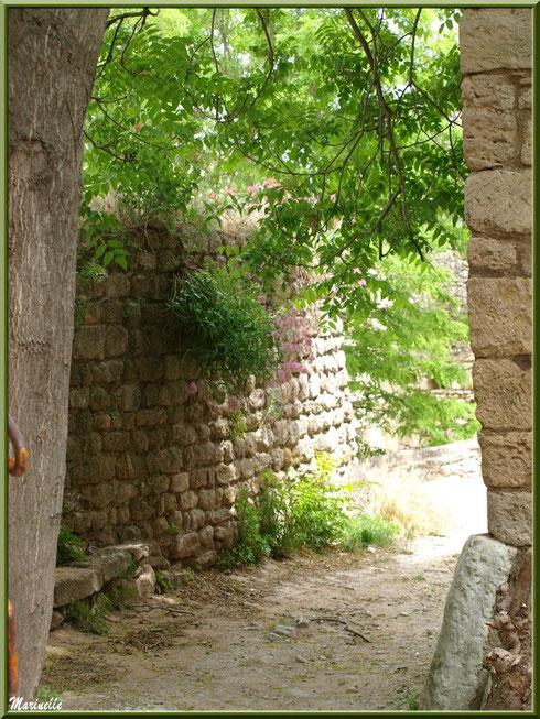 Ruelle ombragée dans le village d'Oppède-le-Vieux, Lubéron (84)