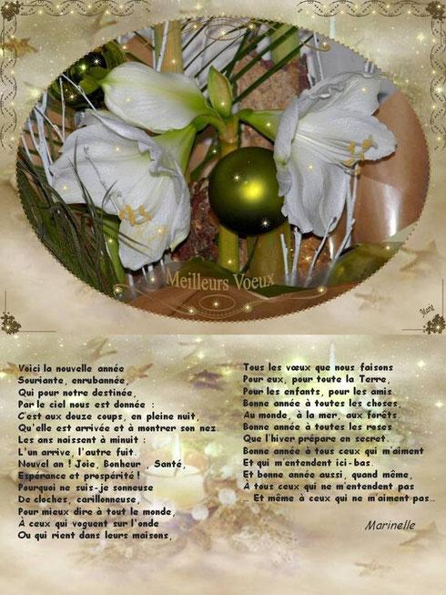 Meilleurs voeux et son poème