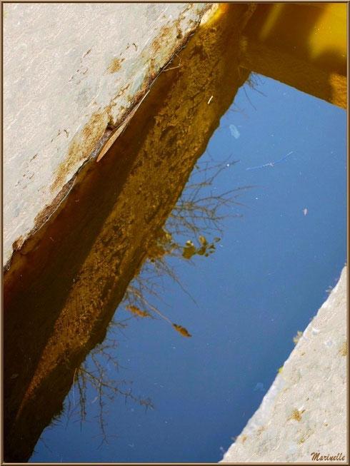 Reflets en contrebas d'une écluse en bordure d'un réservoir, Sentier du Littoral, secteur Domaine de Certes et Graveyron, Bassin d'Arcachon (33)