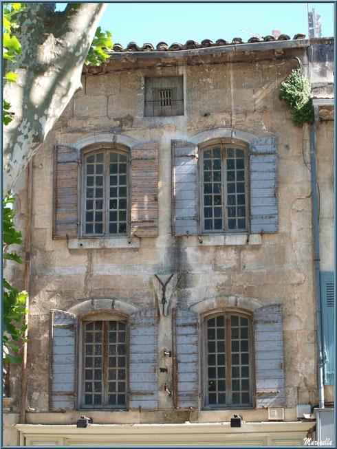 Fenêtres et façade dans une ruelle centre ville à Saint Rémy de Provence, Alpilles (13)