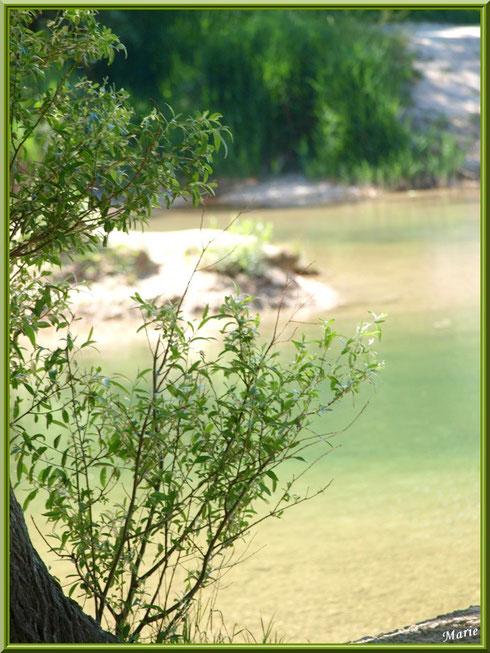 Au bord du lac de Peiroou à Saint Rémy de Provence, Alpilles (13)