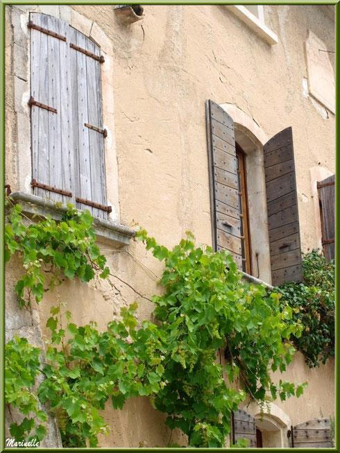 Maison à la treille dans le village d'Oppède-le-Vieux, Lubéron (84)