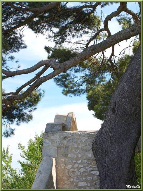 Vieux pin et mur du monument expiatoire dans les jardins de l'ancien monastère de la chapelle Notre Dame de Beauregard, village d'Orgon, entre Alpilles et Lubéron (13)