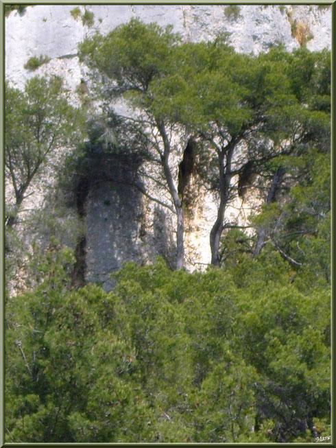 Les Alpilles au-dessus du lac de Peiroou à Saint Rémy de Provence, Alpilles (13) : des trous dans la falaise