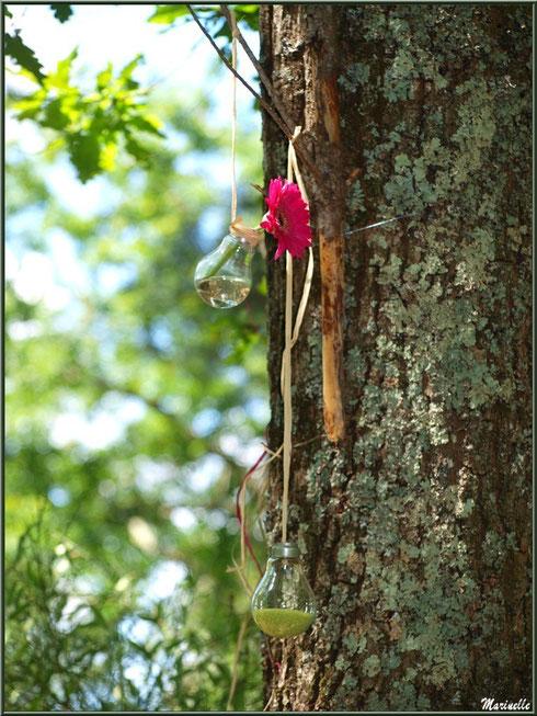 Suspension décorative dans un arbre à la Fête de la Nature 2013 au Parc de la Chêneraie à Gujan-Mestras (Bassin d'Arcachon)