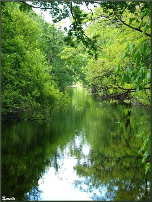 Le Canal des Landes dans tous ses reflets au Parc de la Chêneraie à Gujan-Mestras (Bassin d'Arcachon)