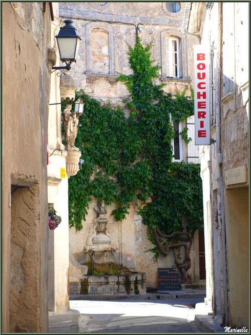 Ruelle et fontaine Nostradamus en fond, centre ville à Saint Rémy de Provence, Alpilles (13)