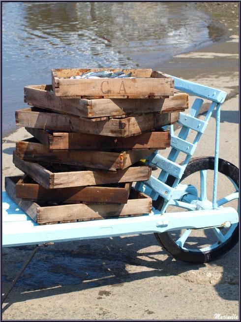 """Les cagettes de sardines, après déchargement, sont empilées sur le """"brout"""" pour être transportées - Fête du Retour de la Pêche à la Sardine 2014 à Gujan-Mestras, Bassin d'Arcachon (33)"""