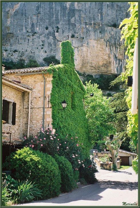 Ruelle avec l'église romane Saint Romain à la façade verdoyante, village de Lioux, Lubéron (84)