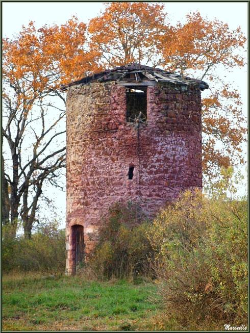 Le Moulin de Cantarrane en décor entre automne et hiver, Sentier du Littoral Bassin d'Arcachon