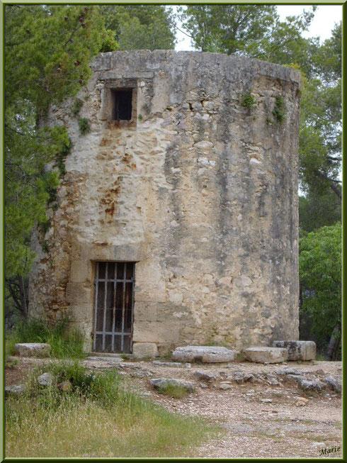 Le moulin Tissot à Fontvielle dans les Alpilles, Bouches du Rhône