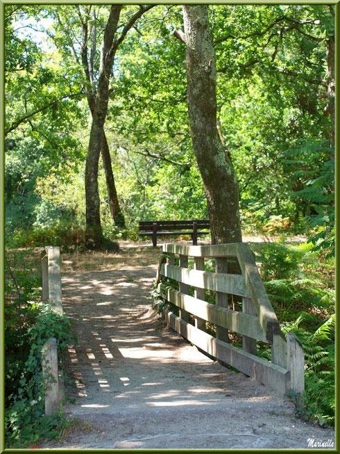 Un des ponts enjambant le Canal des Landes au Parc de la Chêneraie à Gujan-Mestras (Bassin d'Arcachon)