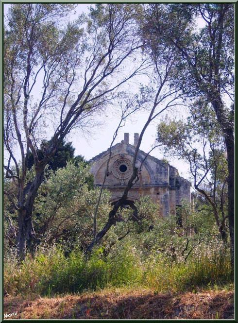 La chapelle Saint Gabriel à Saint Etienne du Grès dans les Alpilles (Bouches du Rhône) : en dehors du village, au milieu des oliviers