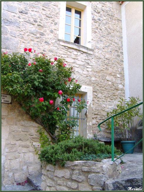 Au détour d'une ruelle dans le village de Le Beaucet, Lubéron (84)