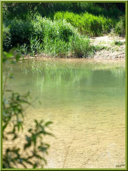 Verdoyance et reflets sur le lac de Peiroou à Saint Rémy de Provence, Alpilles (13)