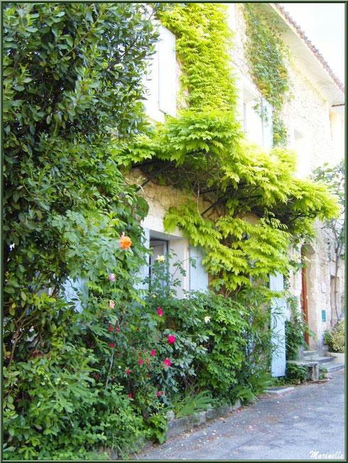 Ruelle verdoyante et fleurie dans le village de Le Beaucet, Lubéron (84)