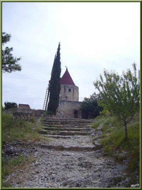Le Moulin de Daudet à Fontvielle dans les Alpilles (Bouches du Rhône)