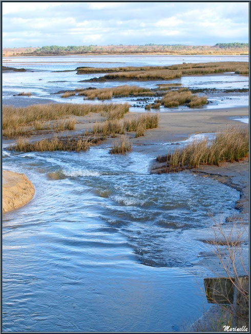 """Ecoulement """"Ecluse de La Pointe""""sur la plage côté Bassin, Sentier du Littoral, secteur Moulin de Cantarrane, Bassin d'Arcachon"""