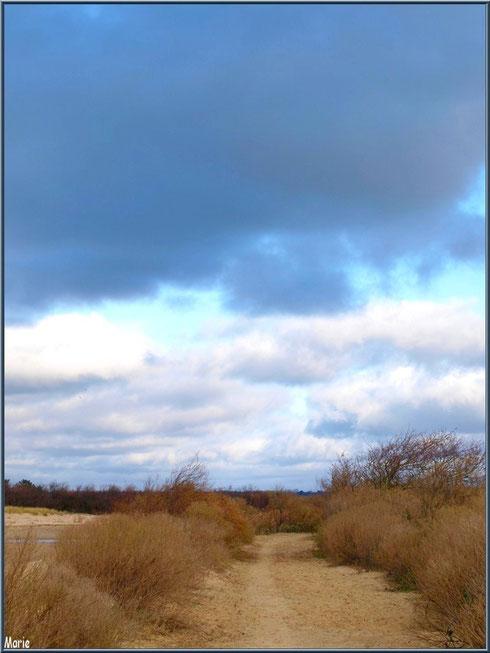 Le sentier en hiver avec un ciel de traine, Sentier du Littoral secteur Moulin de Cantarrane, Bassin d'Arcachon