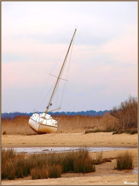 Voilier échoué sur la plage en bordure du Sentier du Littoral, secteur Moulin de Cantarrane, Bassin d'Arcachon
