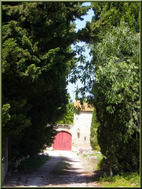 Vieux mas à Saint Etienne du Grès dans les Alpilles, Bouches du Rhône
