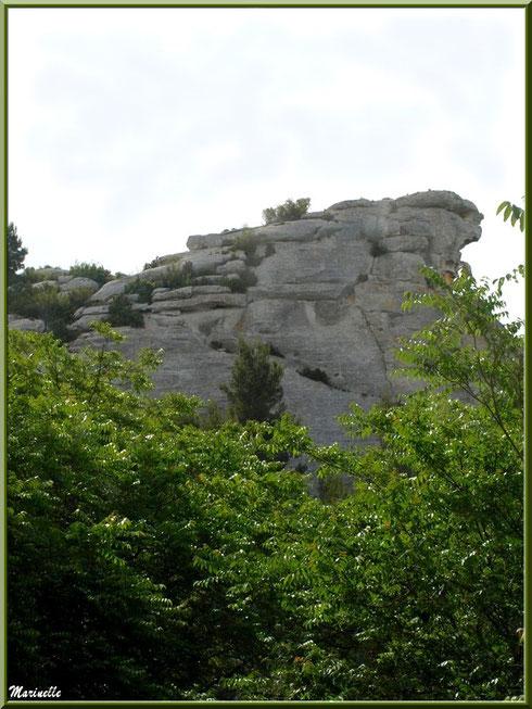 Le Val d'Enfer avec ses rochers et sa végétation, Baux-de-Provence, Alpille (13)