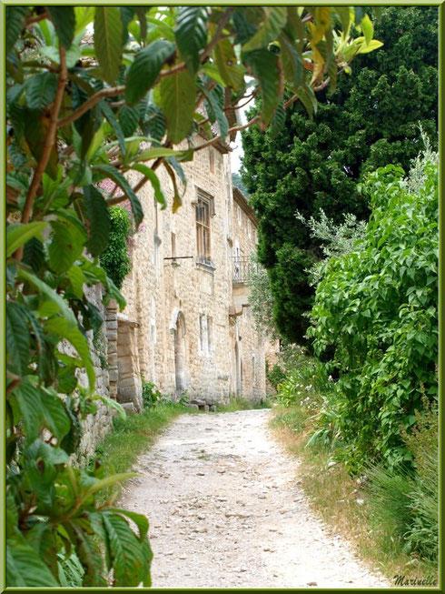 Ruelle et verdoyance dans le village d'Oppède-le-Vieux, Lubéron (84)