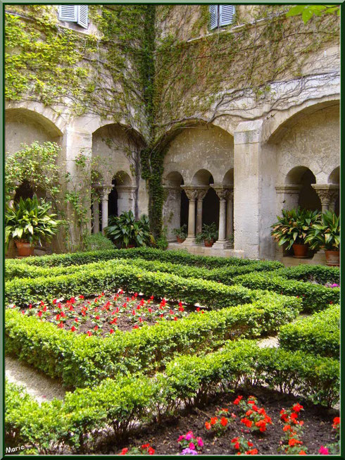 Le cloître et son jardin au monastère de Saint Paul de Mausole à Saint Rémy de Provence (Alpilles - 13)