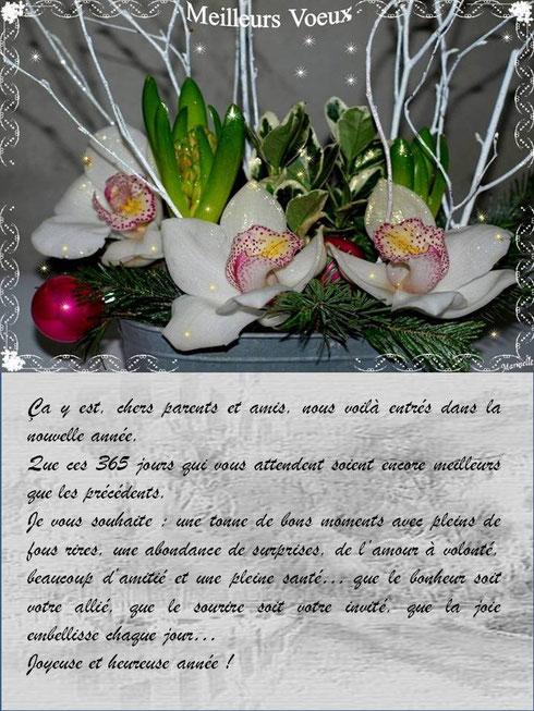 Meilleurs voeux : texte voeux avec orchidées et jacynthes