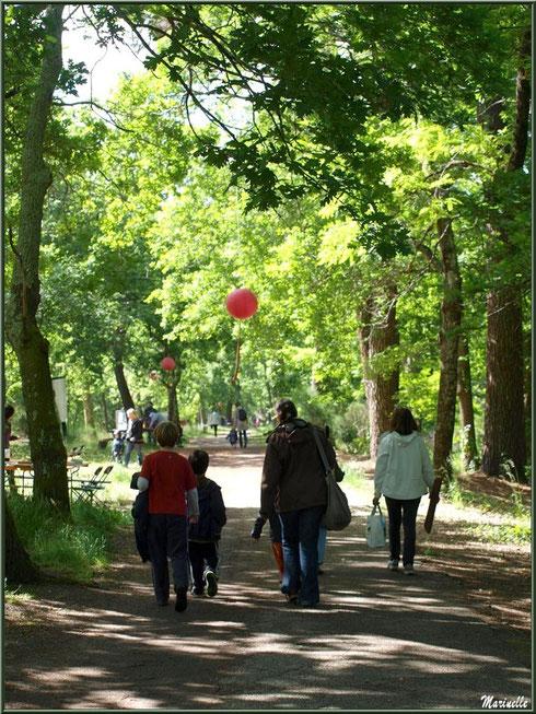 Le chemin jalonné d'ateliers et de lampions à la Fête de la Nature 2013 au Parc de la Chêneraie à Gujan-Mestras (Bassin d'Arcachon)